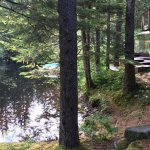 Pearson's Pond Luxury Inn and Adventure Spa-billede