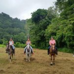 Discovery Horseback Tours Foto