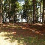 Foto de Fort McAllister State Historic Park Campground