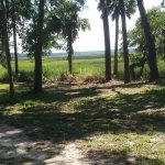 Photo de Fort McAllister State Historic Park Campground