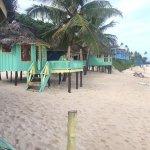 Beach Fales