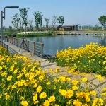 Foto di Fairmont Yangcheng Lake