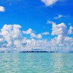 Foto de Carp Island Resort