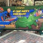 Foto de Alligator Cove Airboat Nature Tours