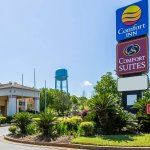 Photo of Comfort Inn - Forsyth