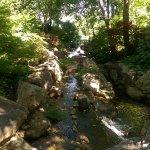 Fort Worth Botanic Garden Foto