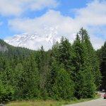 Foto di National Park Inn at Mount Rainier