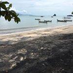 Black Sand Beach Foto
