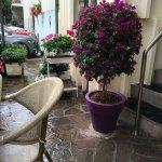 Foto de Arpa Hotel