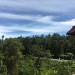 Photo de 1497522