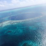 Photo de Le Grand Trou Bleu, atoll de Lighthouse Reef