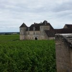 Photo de Wine and Voyages