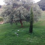 Azienda Agricola Trequanda Photo