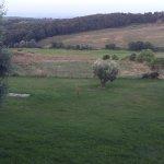Azienda Agricola Trequanda Foto