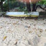 Photo de Catch Beach Club