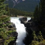 Athabasca Falls only a few miles away