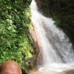 Photo de Costa Rica Unique Transfers & Tours
