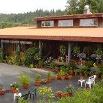 Alaskan Sourdough Lodge LLC In Wrangell Alaska