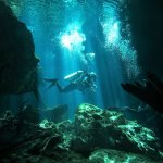 Truly amazing! My first cenote dive at 61 years young! Thanks Alfredo!
