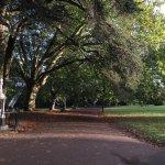 el parque temprano