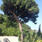 Foto de Giardino Marchese d'Altavilla Hotel