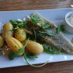 Grilled pikeperch, horseradish sour cream and new potatoes