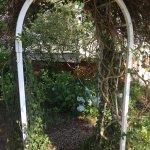 part of the front yard's Secret Garden