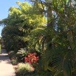 Foto de Bluewater Harbour Motel