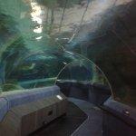 National Aquarium Foto