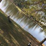 Foto de Parque dos Ipes