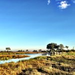 Wilderness Safaris Kings Pool Camp Bild