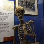 Foto de Royal London Hospital Museum