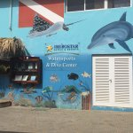 Dressel Dive shop at Iberstar Rose Hall