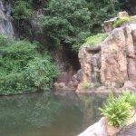 很棒的天然溫泉區