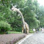 Seven Star Park (Qixing Gongyuan) Foto