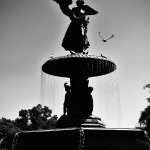 central park @OlgasPhotography