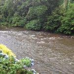 Photo de River's Edge Motel