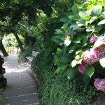 Tolle Gartenanlage mit Pool. Hotel ist in den Reb- und Apfelplantagen eingebetet. Enge Auffahrt