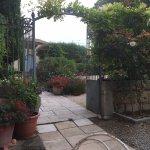 The garden at Le Cedre