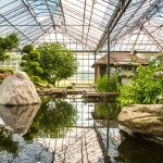 Watertuin Naaldwijk