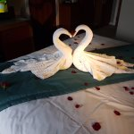 Towel swans with roses for our 15th anniversary