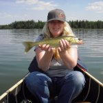 Typical smaller walleye in Moose Lake.