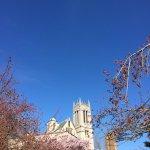 University of Washington Foto