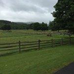 Billings Farm and Museum Foto