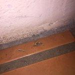 Photo de Ojo Caliente Mineral Springs Resort and Spa