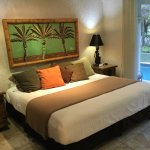 Soggy Peso has beautiful Poolside Rooms