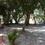 Foto de Vikri Beach Resort Pangkor