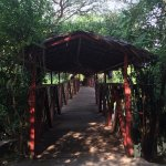 The Bridge leading to the safari park