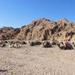 Campo dei beduini