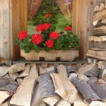 geranium window boxes and wood piles at every home!